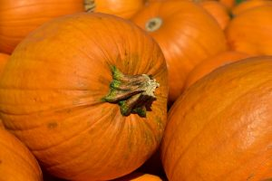pumpkin-3636243_640