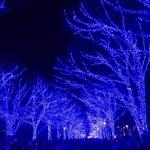 青の洞窟が渋谷に
